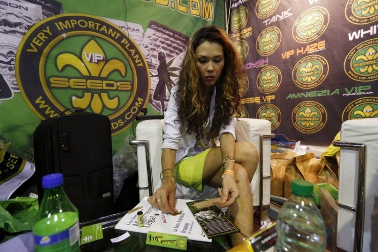 Expo Cannabis ярмарка в Уругвае