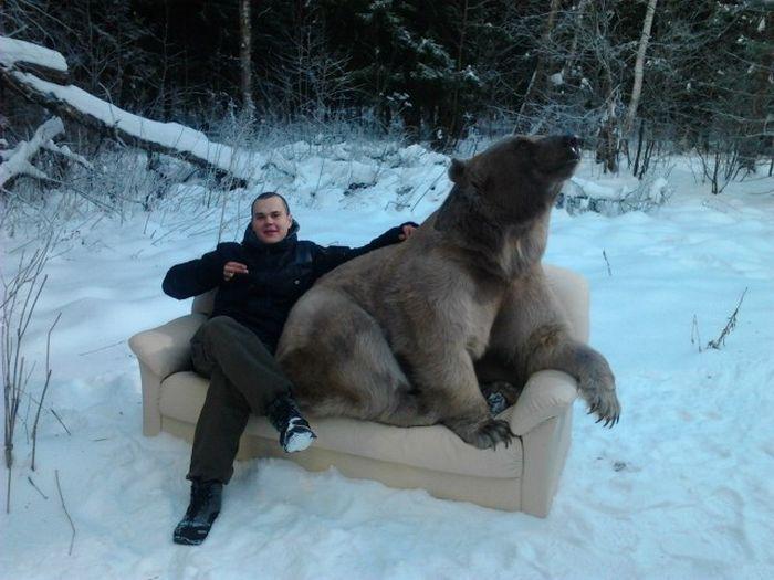 Русские картинка прикол