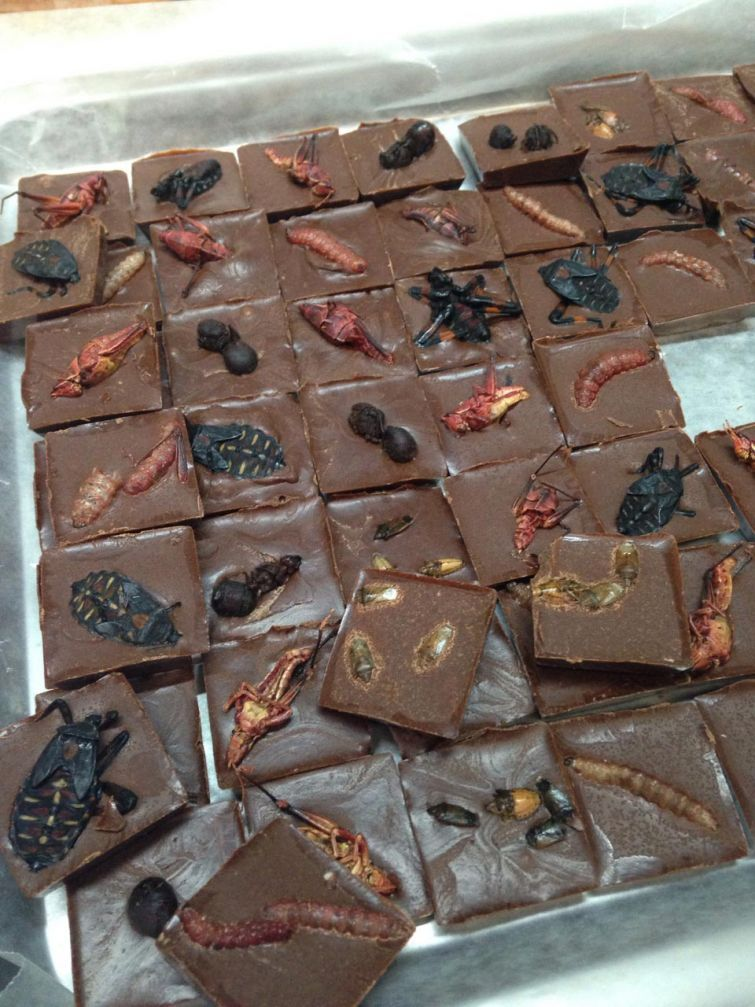 Хрустящие шоколадки от азиатских кулинаров