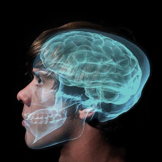 33 интересных факта про мозг