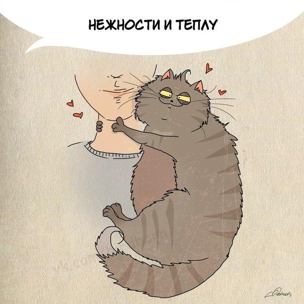 Чему хорошему мы можем научиться у котов