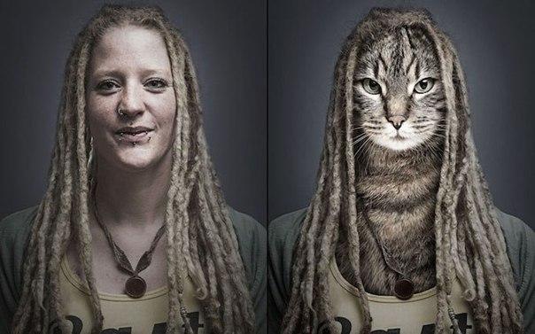 Кошки в образах своих хозяев от Себастьяна Манани