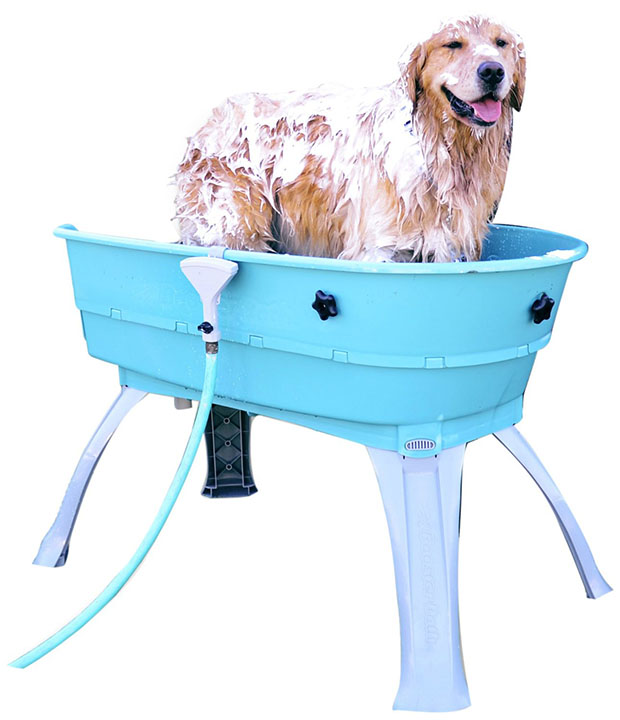 Креативные изобретения для собак