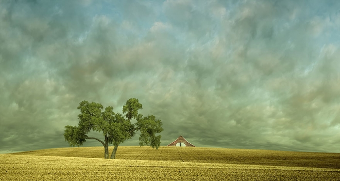 Красота сельских пейзажей Лизы Вуд