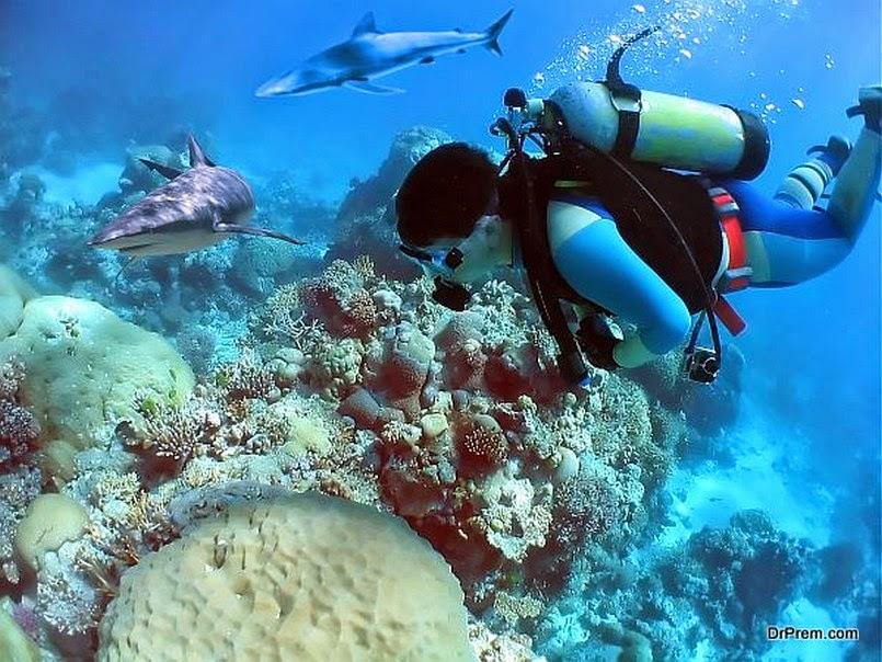 Лучшие места планеты для любителей подводного плавания