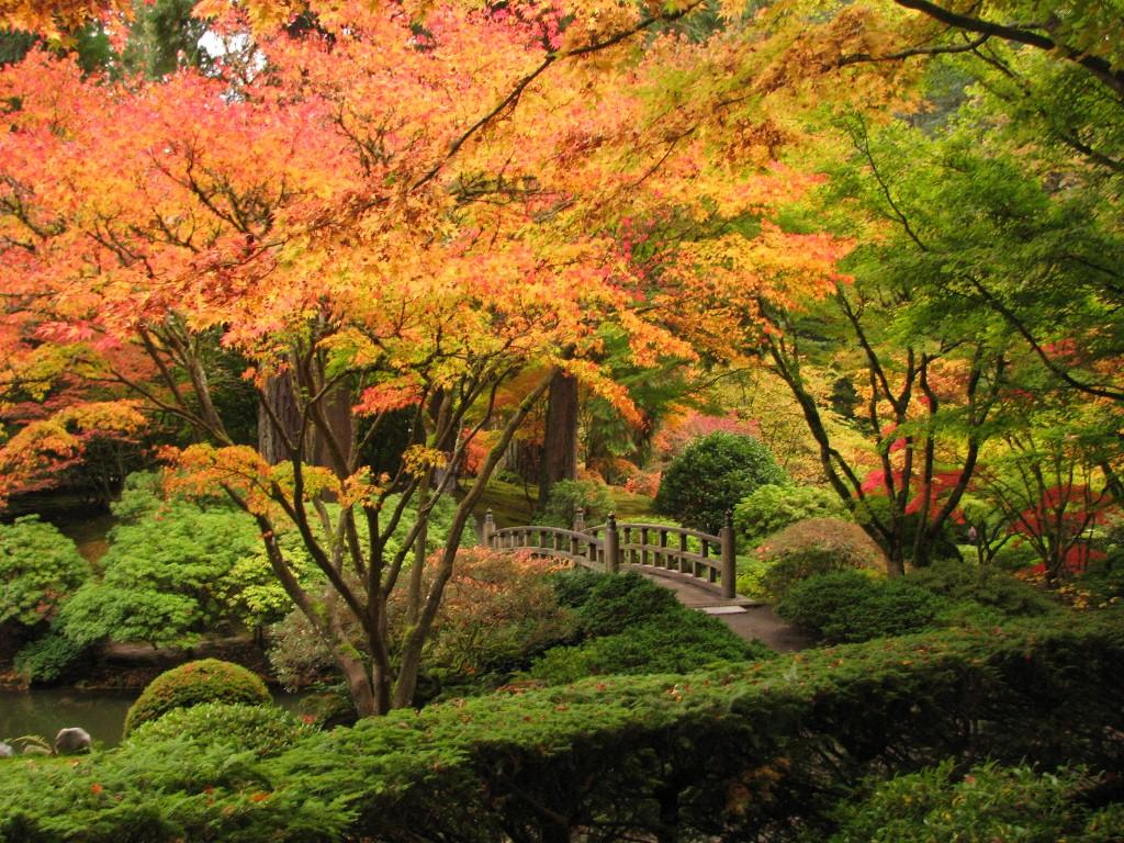 Портлендский японский сад в США