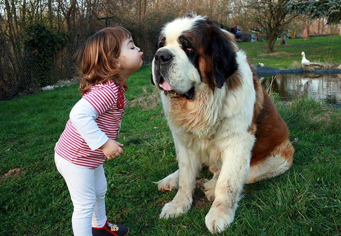 Дети и собаки на трогательных фотографиях