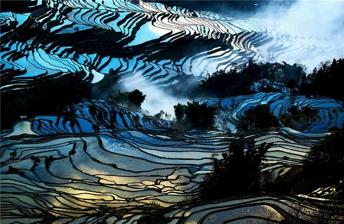 Потрясающие снимки рисовых полей из разных стран