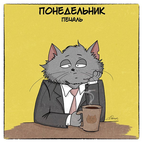 Трудовая неделя и коты