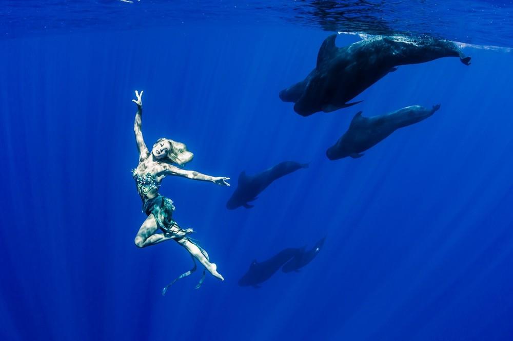 Подводные фотографии с китами