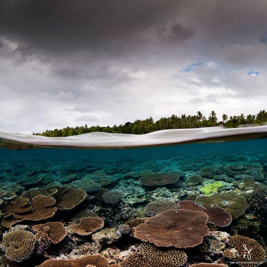 Подводный и надводный мир на фотографиях Мэтти Смита