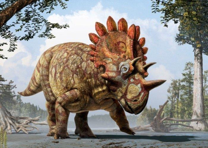 Вс самое интересное о динозаврах настоящий рост брухаткайозавра