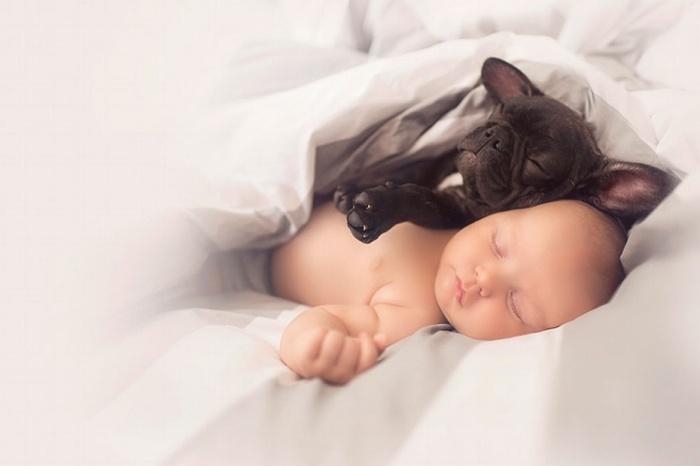 Трогательные снимки дружбы пятимесячных малышей