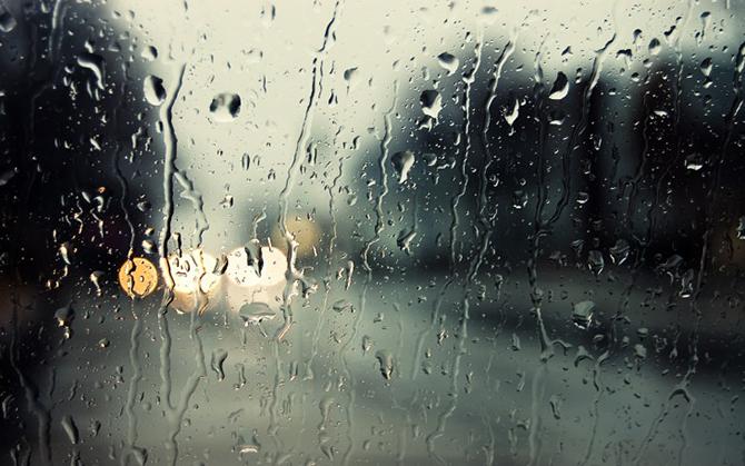 20 интересных фактов о дожде
