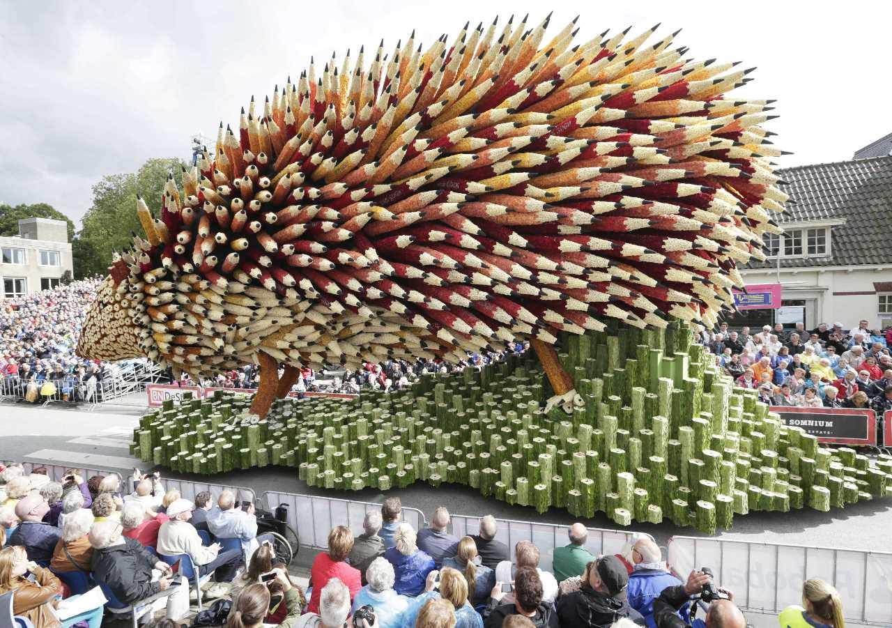 Традиционный парад цветов в голландском городе Зюндерт