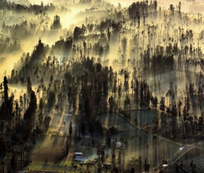 Снимки фотоконкурса National Geographic Photo Contest 2015
