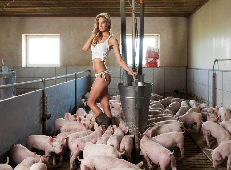 Эротический календарь от молодых фермеров