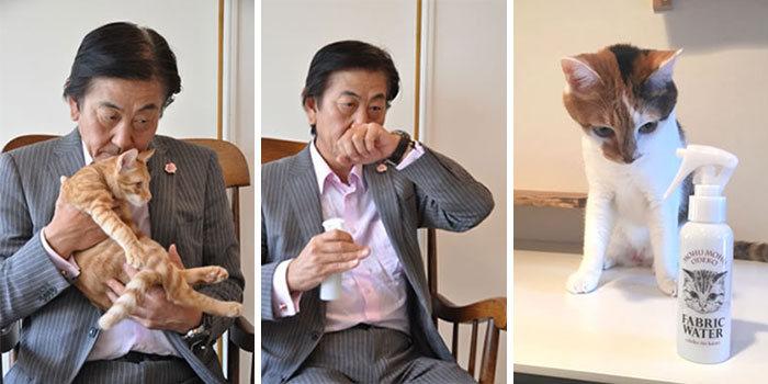 Парфюм с ароматом кошачьего затылка выпустили в Японии