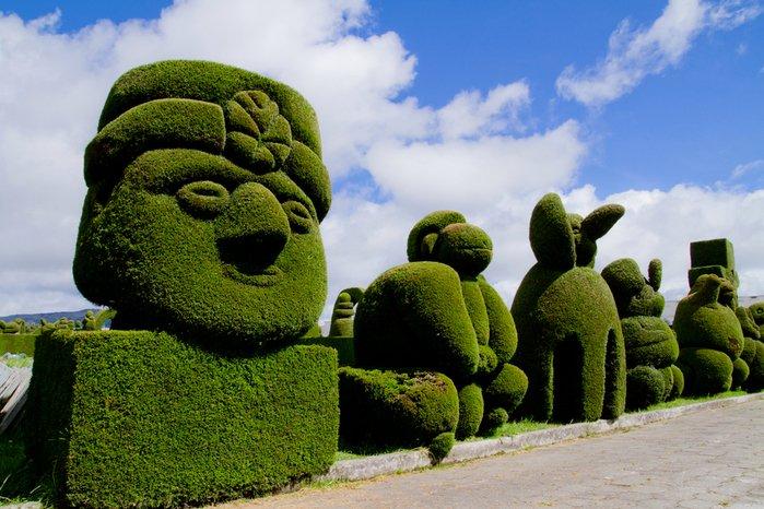 Потрясающие живые скульптуры из деревьев