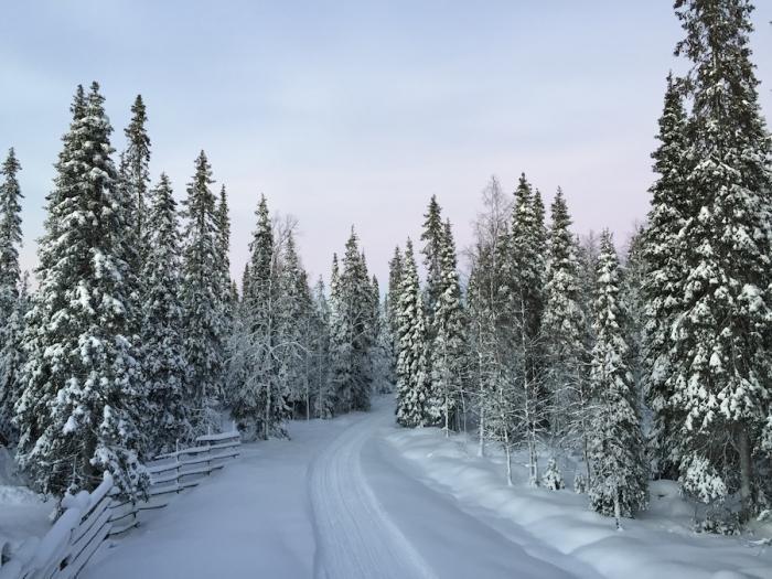 Интересное о снеге