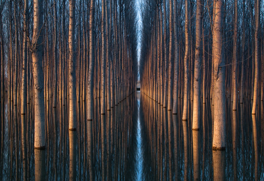 Красота природы на удивительных фотографиях