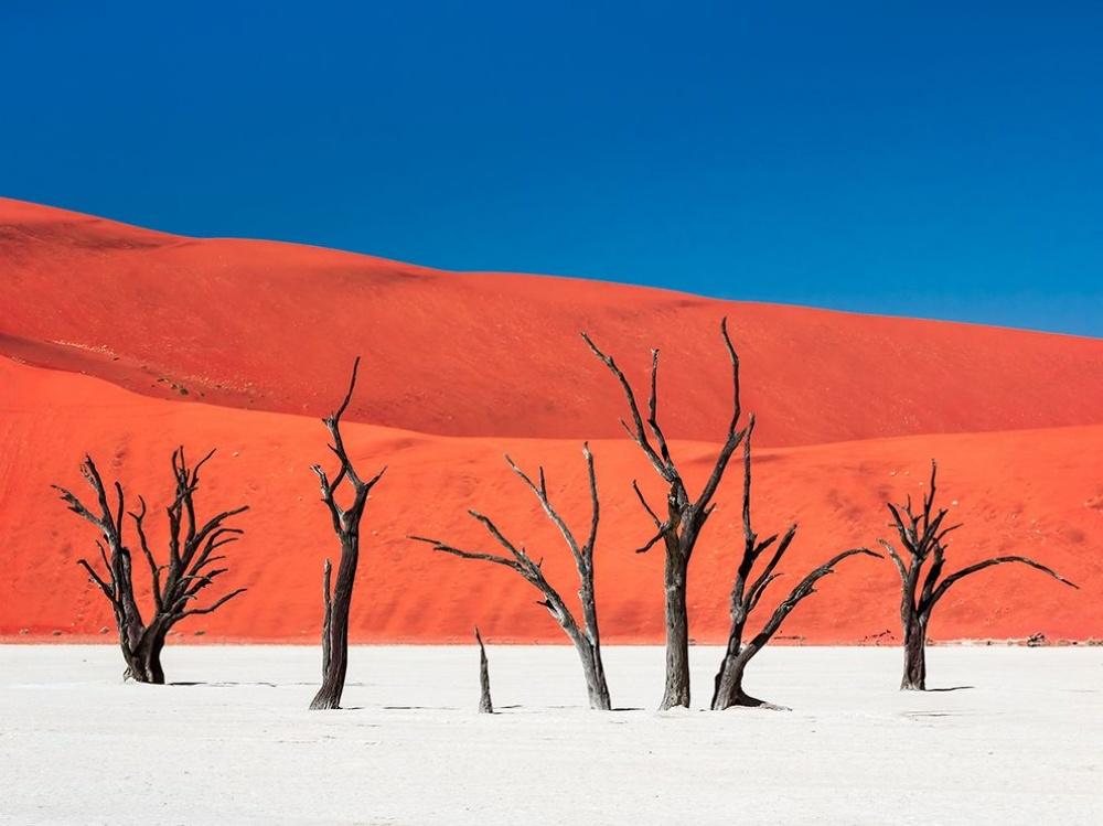 Лучшие фотографии января от National Geographic