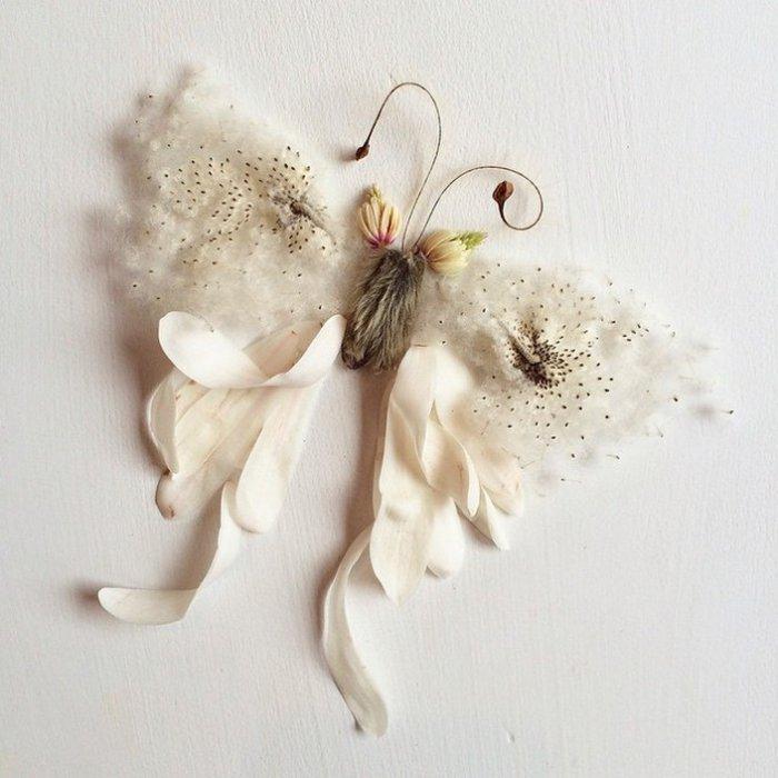 Удивительные картины из растительных материалов от Бриджит Бет Коллинз