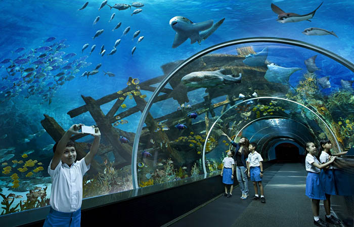 10 самых красивых аквариумов в мире