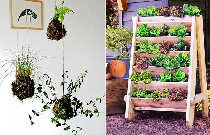 17 оригинальных идей для создания вертикального сада
