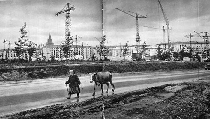 Деревенская Москва 50-х — 60-х годов XX века
