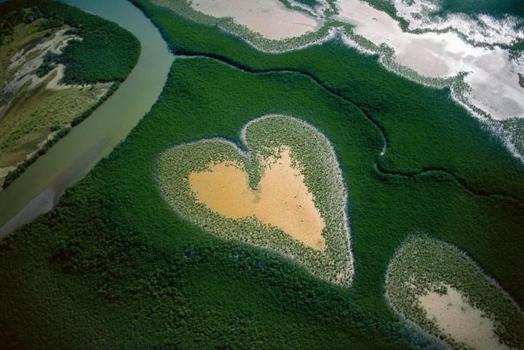 Природа признается нам в любви