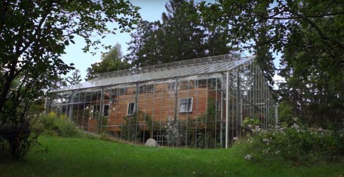 Шведская пара построила теплицу поверх дома