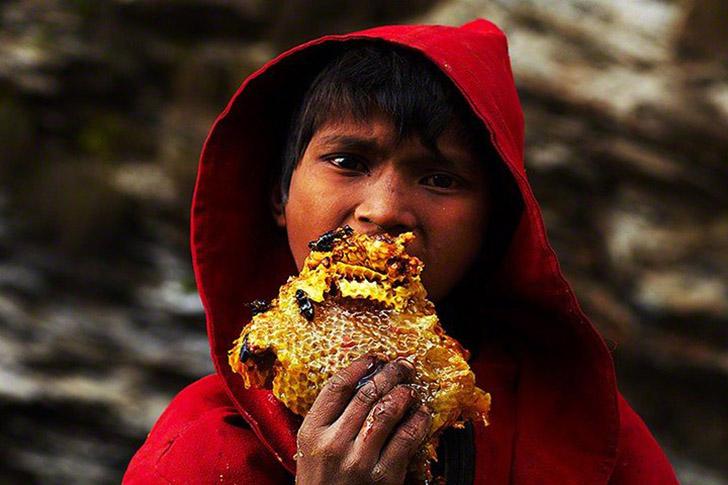 Как добывают сладкое золото Непала