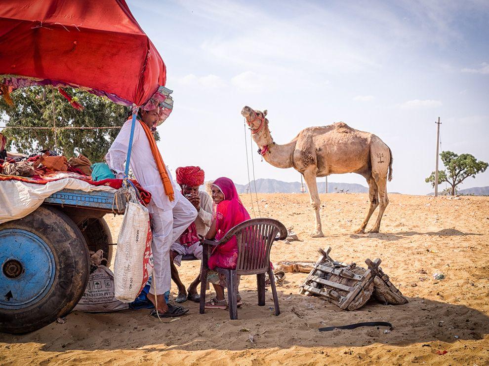 Лучшие фотографии апреля 2016 от National Geographic