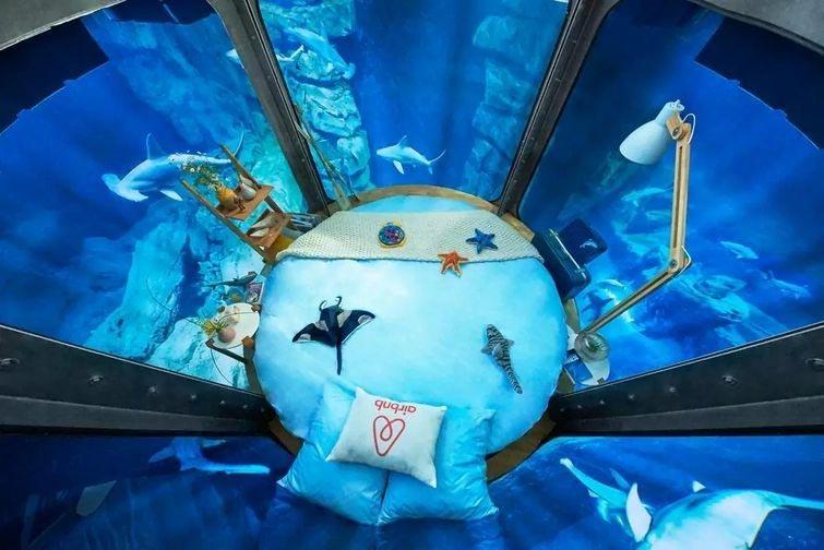 Номер, в котором можно переночевать внутри аквариума с акулами