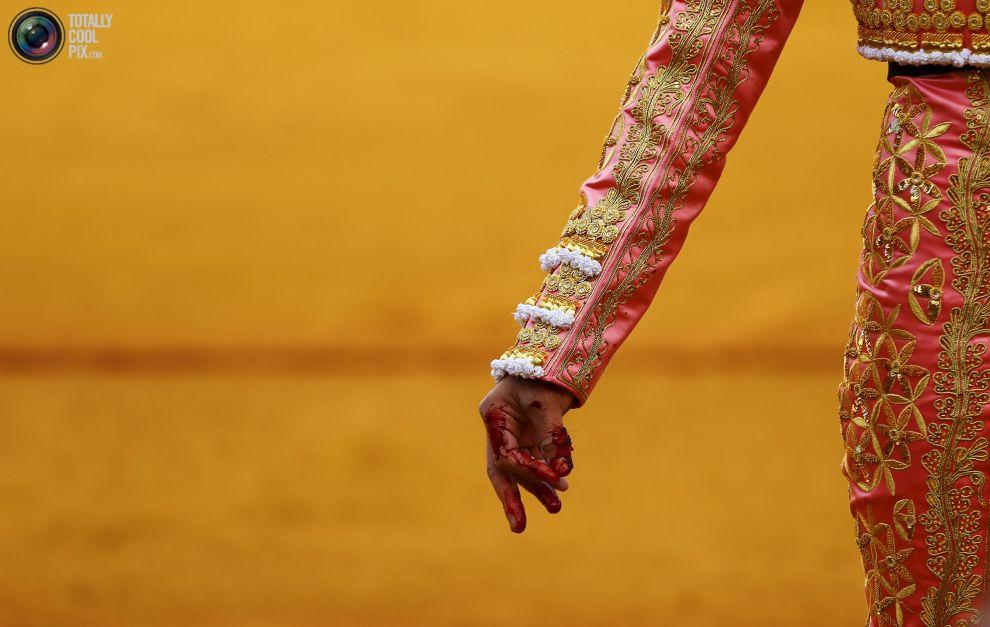Умирающее кровавое искусство — коррида