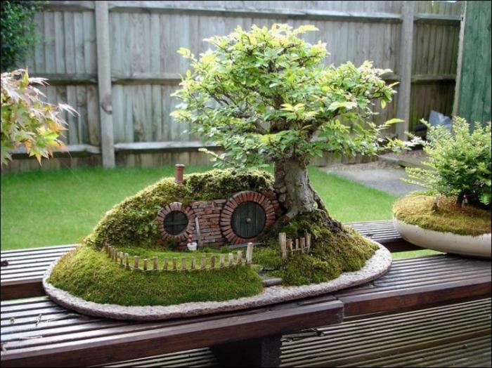 Деревья бонсай для хоббитов