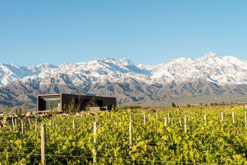Дом винодела в Аргентине