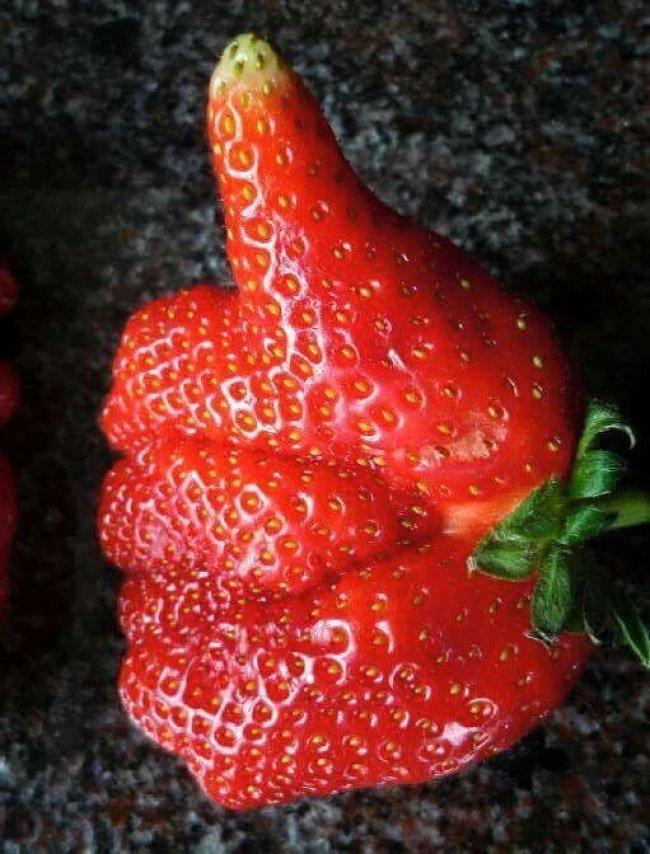 Плоды необычной формы