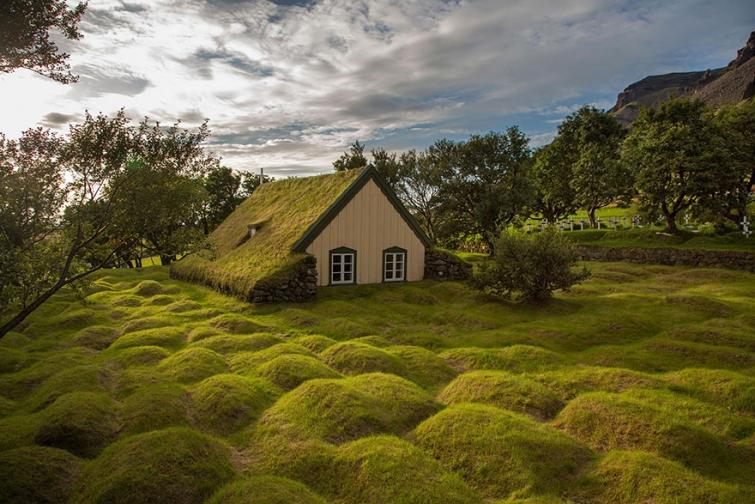 Сказочные скандинавские дома с зелёными крышами