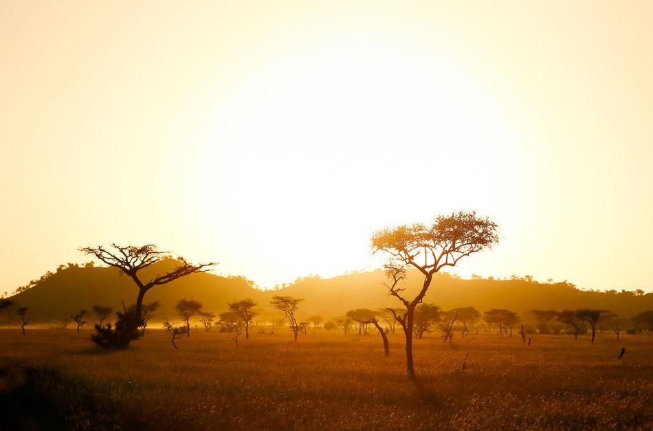10 снимков красивой и далекой Африки
