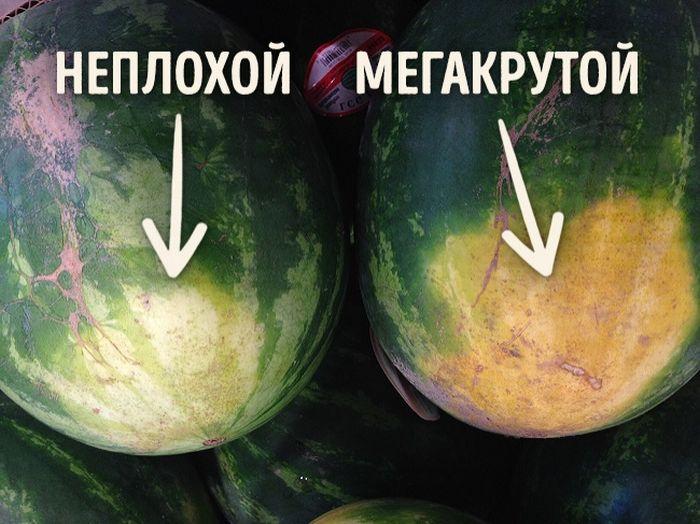 Как выбрать вкусный арбуз: 5 признаков