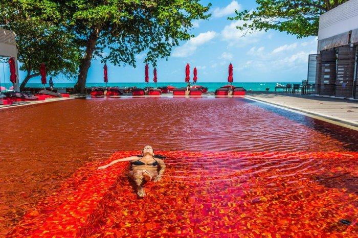Самые удивительные бассейны со всего мира