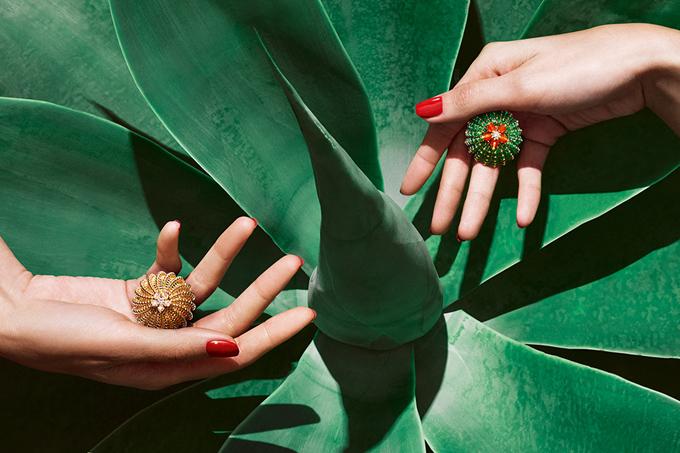 Украшения в виде кактусов Cactus de Cartier