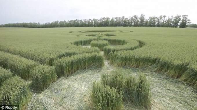 Загадочная история кругов на полях