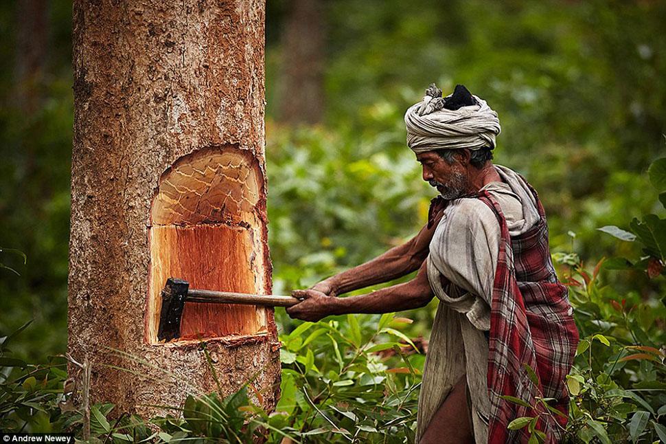 Жизнь охотников-собирателей из первобытного племени в Непале