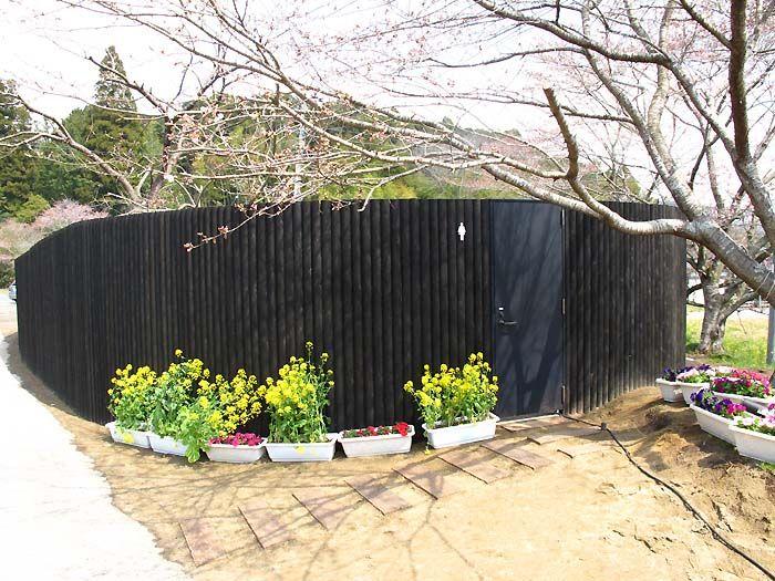 Необычный общественный туалет в Японии