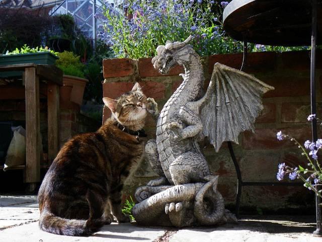 15 подарков для любителей драконов
