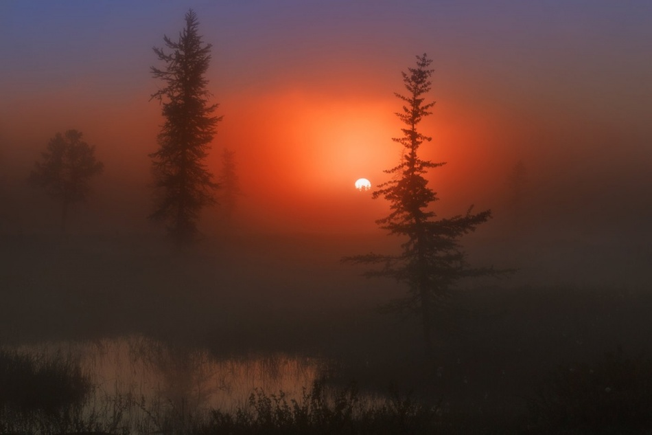 Теплые и яркие фото, доказывающие, что осень ничем не хуже лета
