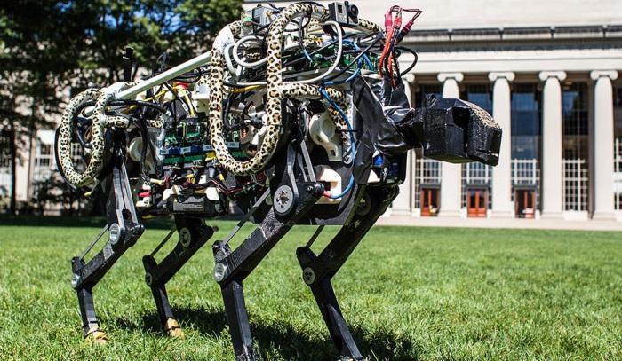 7 вещей, которые роботы уже делают самостоятельно
